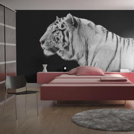 Papier peint - Tigre blanc