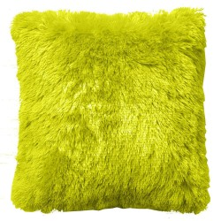 Coussin PLUCH